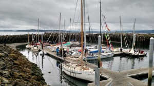 Some of the race fleet gathering in Port Townsend, WA, before the start.